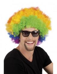 Flerfärgad afro/disco clownperuk vuxna