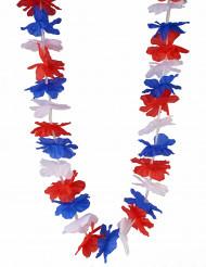 Trefärgad Hawaii Supporter Halsband