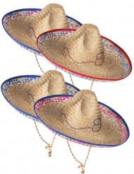 Mexikansk Sombrero i Halm Vuxen