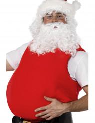 Mage Jultomte vuxen