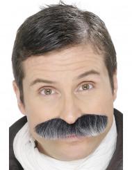 Gråaktig mustasch vuxen