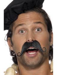 Mustasch fransman vuxen