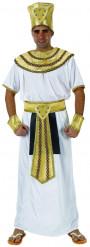 Egyptisk farao - utklädnad vuxen