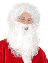 Jultomteperuk och skägg