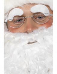 Jultomtens glasögon Vuxen