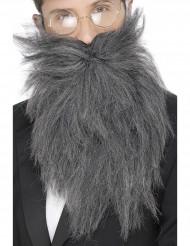 Långt grått skägg herrar