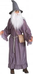 Maskeraddräkt Gandalf Sagan om Ringen™ vuxen