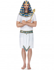 Egyptisk faraokostym man