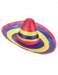 Multifrägad sombrero för vuxna till festen