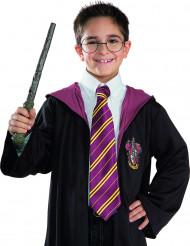 Harry Potter™ trollstav och glasögon