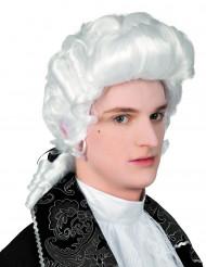 Ludvig - Barock peruk för vuxna