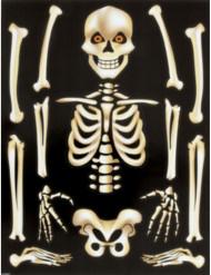Skelettklistermärken Halloween för fönster