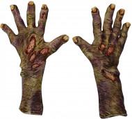 Zombiehänder som ruttnar Vuxen Halloween