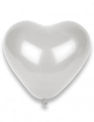 8 vita hjärtballonger