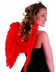 Röda vingar 50 x 50 cm vuxna