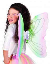 Mångfärgade fjärilsvingar 50 x 50 cm vuxna