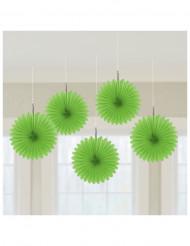 5 Gröna solfjädrar - Festdekorationer
