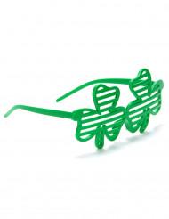 Skojglasögon med gröna fyrklövrar St Patrick