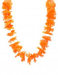 Orange - Hawaiihalsband