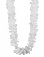Vitt Hawaiihalsband till festen