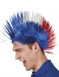 Punkperuk för Frankrike-supporter