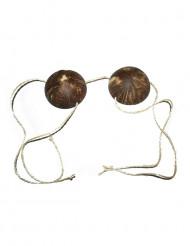 Bikini av kokosnötter för vuxna