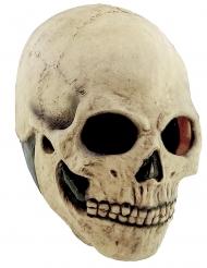 Dödskalle mask för vuxen till Halloween