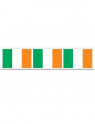 Irländsk flaggirglang St Patrick