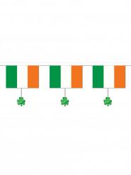 Girlang med irländsk flagga och fyrklövrar