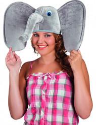 Elefantmössa vuxen