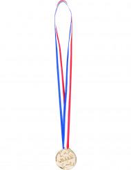 6 vinnarmedaljer