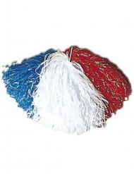 Supporterpompong för Frankrike