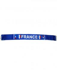 Frankrike Supporterhalsduk