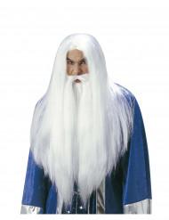 Trollkarl peruk med skägg vuxen