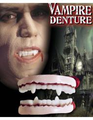 Vampyrtänder vuxen Halloween