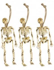 Hängda skelett dekoration Halloween