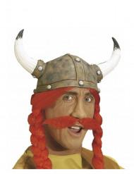 Röd mustasch galler vuxen