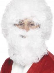 Vitt skägg och peruk vuxen jul
