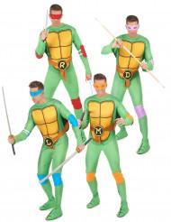 Hela turtlesgänget