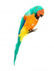 Exotisk grön papegoja