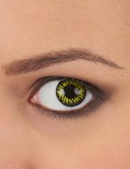 Kontaktlinser fantasi gula med svarta kanter vuxen