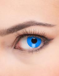 Kontaktlinser blått öga