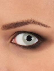 Kontaktlinser fantasi zombieöga grå vuxen Halloween