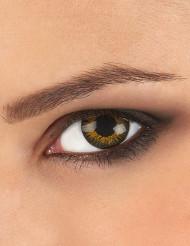 Guldiga linser i tre toner för vuxna - Maskeradsminkning