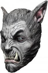 Grå varulv - Mask för vuxna