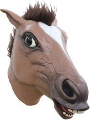 Brun hästmask