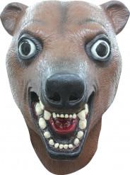 Mask brun björn