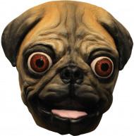 Mask liten hund