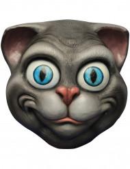 Mask katt