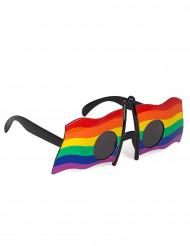 Glasögon med flerfärgade flaggor